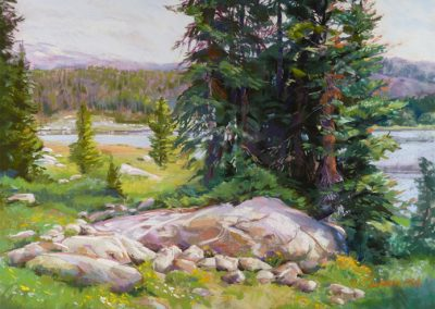 Carol Schloss Pastels High Mountain Meadow