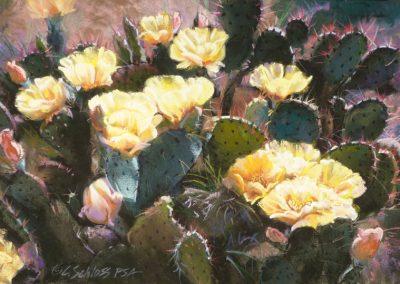Carol Schloss Pastels Prickly Pears in Bloom