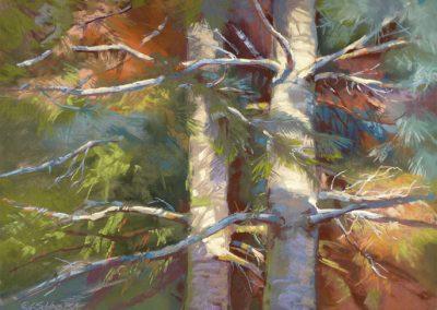 Carol Schloss Pastels Sheltering Branches