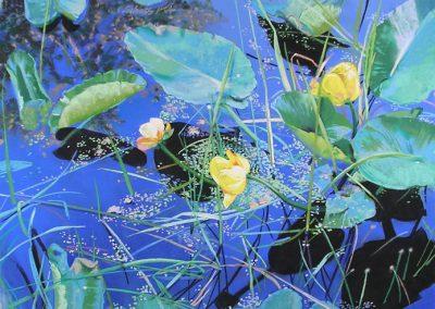 Carol Schloss Pastels Waterworld